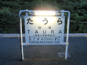 Taura_01
