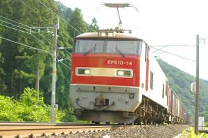 Kamotu_510