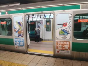 Saikyo_ha_sadoda_01