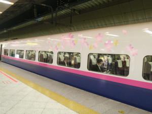 Sakura_hukushu_53