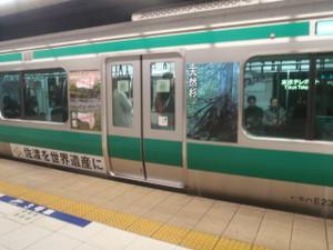 Saikyo_ha_sadoda_07