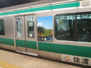 Saikyo_ha_sadoda_08