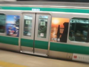 Saikyo_ha_sadoda_09