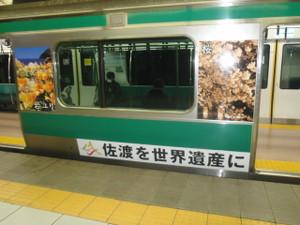 Saikyo_ha_sadoda_10