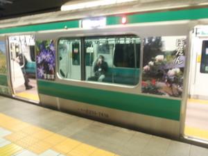 Saikyo_ha_sadoda_11