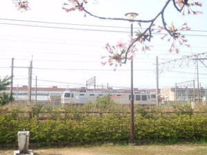 Ef510510_kyuka_01