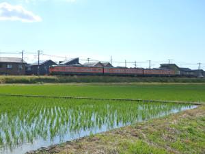 115_kokuiro01