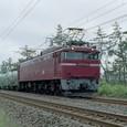EF81-141