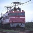 EEF81
